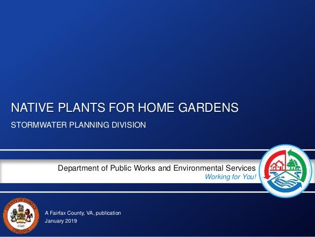 A Fairfax County, VA, publication Department of Public Works and Environmental Services Working for You! NATIVE PLANTS FOR...