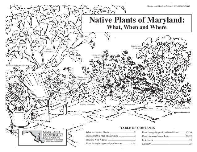 Home and Garden Mimeo HG#120 3/2005                                                           Native Plants of Maryland:  ...