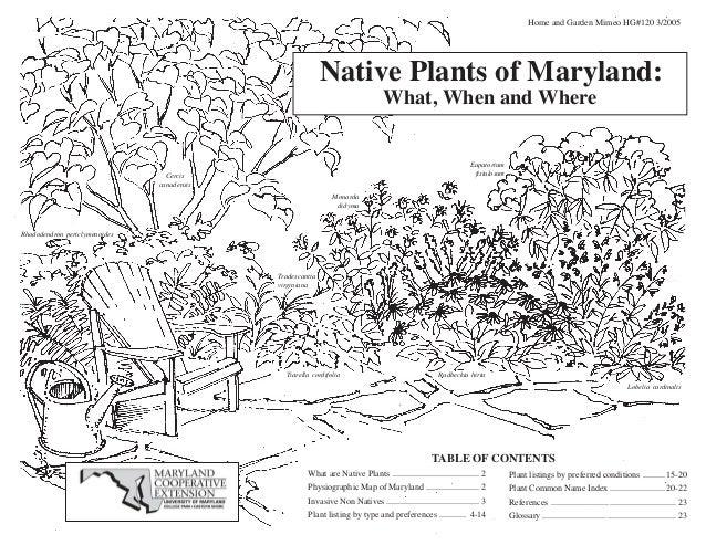 native plants to maryland