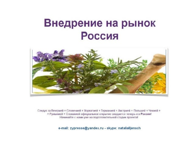 Nat präsentation russisch