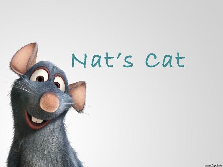 Nat's Cat