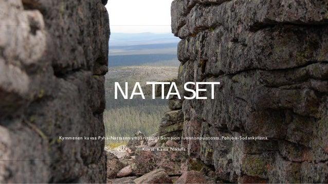 NATTASET Kymmenen kuvaa Pyh�-Nattasen ymp�rist�st� Sompion luonnonpuistosta, Pohjois-Sodankyl�st�. Kuvat: Kaisa Nikkil�