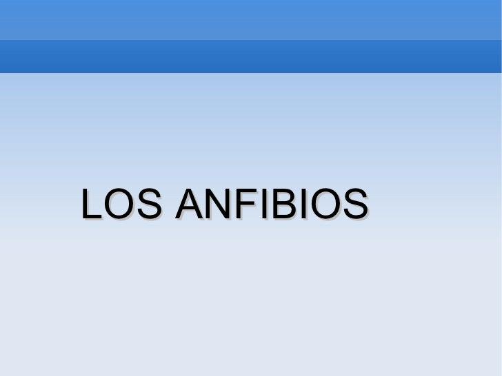 <ul><li>LOS ANFIBIOS  </li></ul>