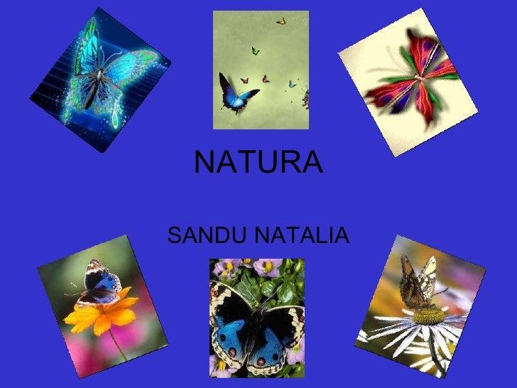 NATURA SANDU NATALIA