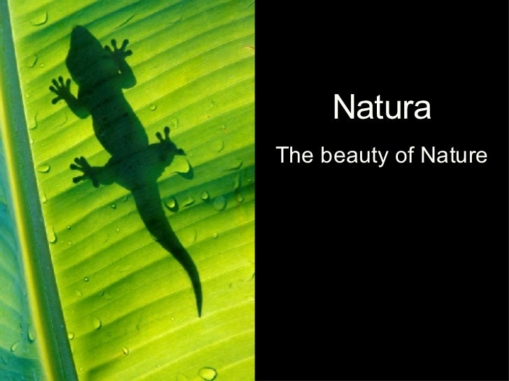 Natura The beauty of Nature