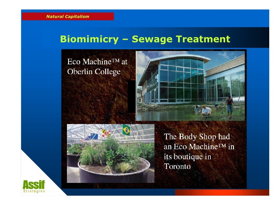 biomimicry sewage treatment and natural resources In the old world sewage was a waste product of no use, one that we paid to get rid of in our world sewage is a valuable financial and ecological resource, a resource to be reused indefinitely in the old world quality wastewater treatment systems were expensive, with high maintenance, high running costs and regular breakdowns.