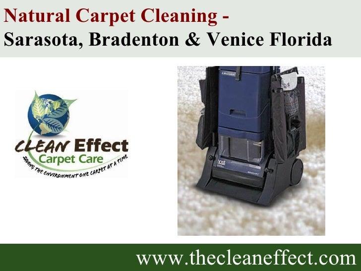 www.thecleaneffect.com Natural Carpet Cleaning -  Sarasota, Bradenton & Venice Florida