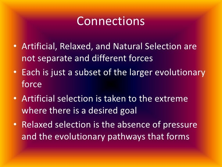 natural selection and artificial selection in dogs Thus, all domestic dog varieties, from chihuahuas to great danes, trace their separate lineages to a common wild ancestor, the wolf (canis lupus) similarly the following exercise in artificial selection will serve as an introduction to natural selection, and we hope will help you to better understand this important concept.