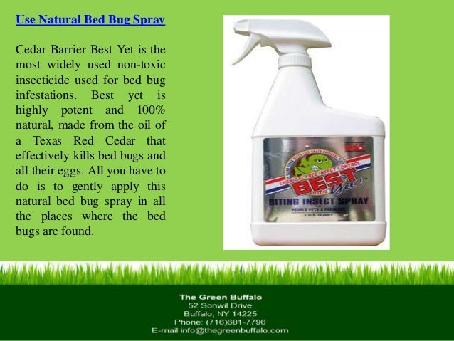 best bed bug spray. natural and nontoxic travel spray bed bug