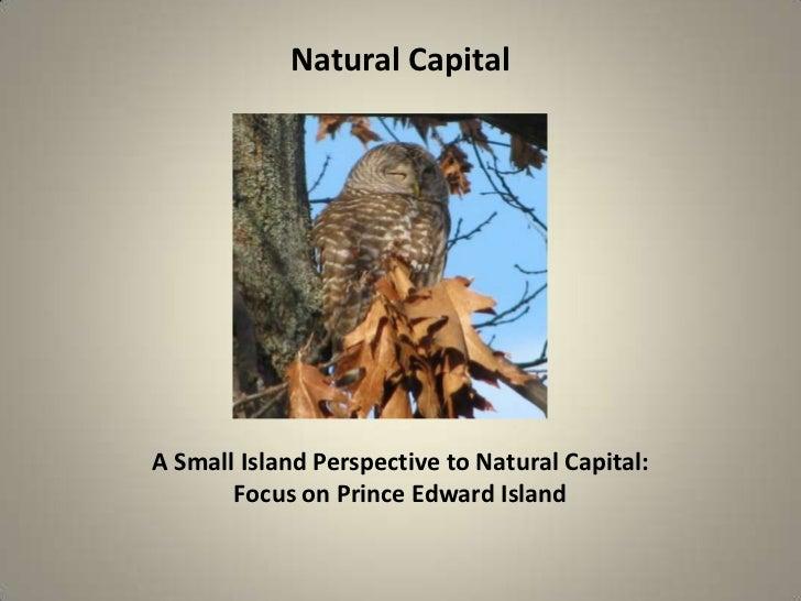 Natural CapitalA Small Island Perspective to Natural Capital:       Focus on Prince Edward Island