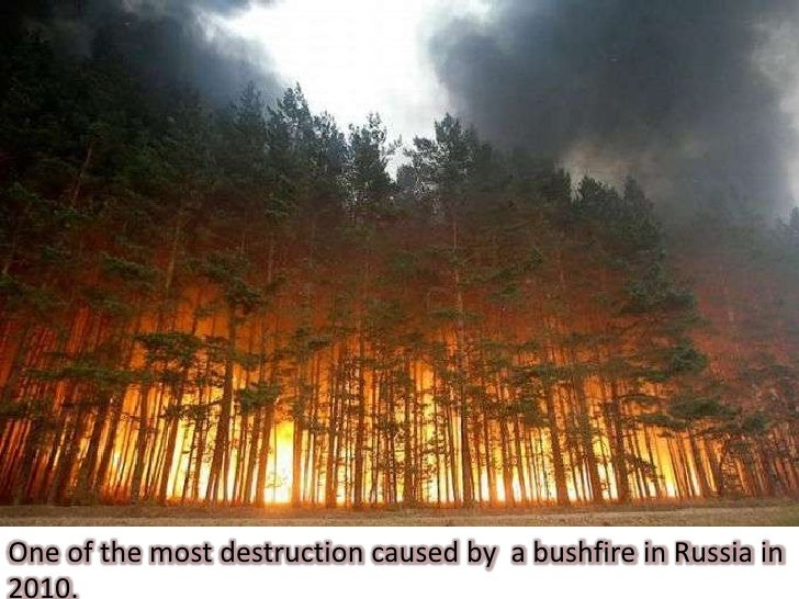 What Natural Disasters Occur In China