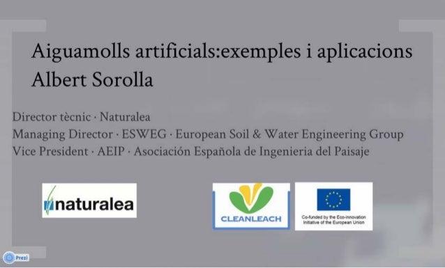 Aiguamolls artificials: exemples i aplicacions