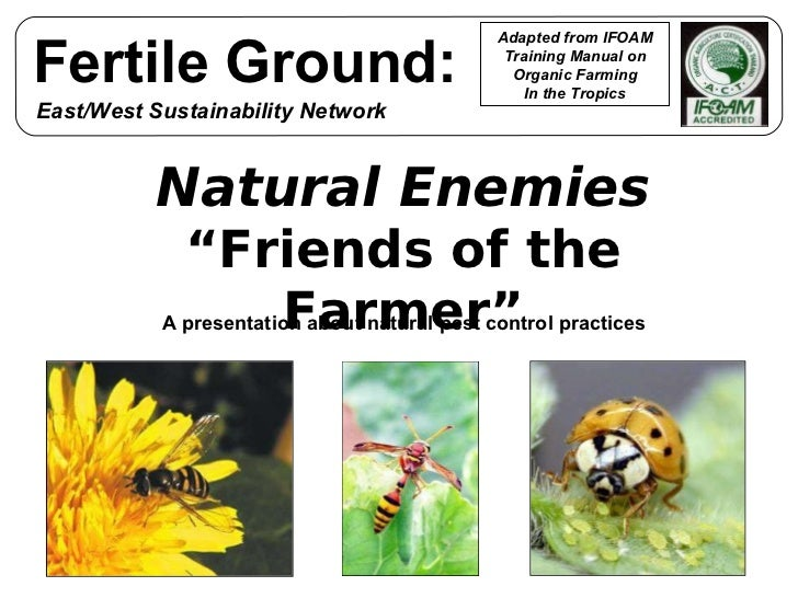 """Natural Enemies """" Friends of the Farmer"""" A presentation about natural pest control practices Adapted from IFOAM Training M..."""