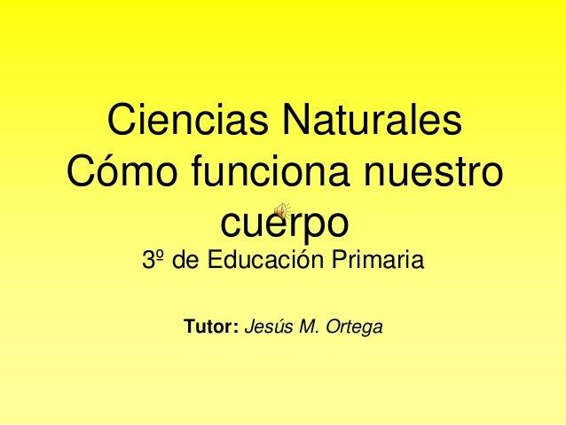 Ciencias Naturales Cómo funciona nuestro cuerpo 3º de Educación Primaria Tutor: Jesús M. Ortega