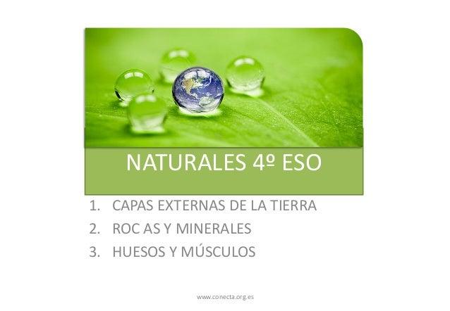 NATURALES 4º ESO 1. CAPAS EXTERNAS DE LA TIERRA 2. ROC AS Y MINERALES 3. HUESOS Y MÚSCULOS www.conecta.org.es