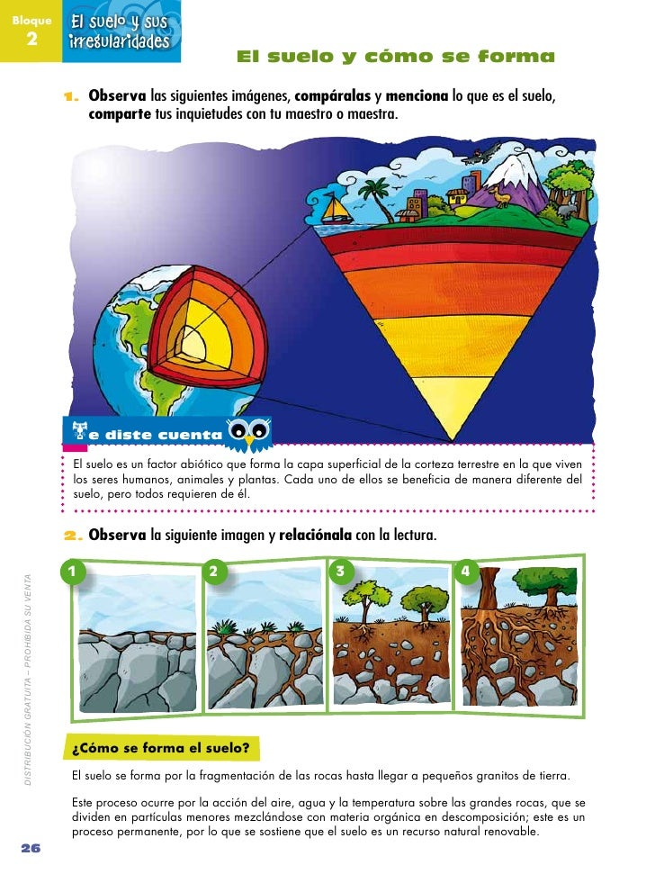 Naturales 4 1 for Importancia de los suelos