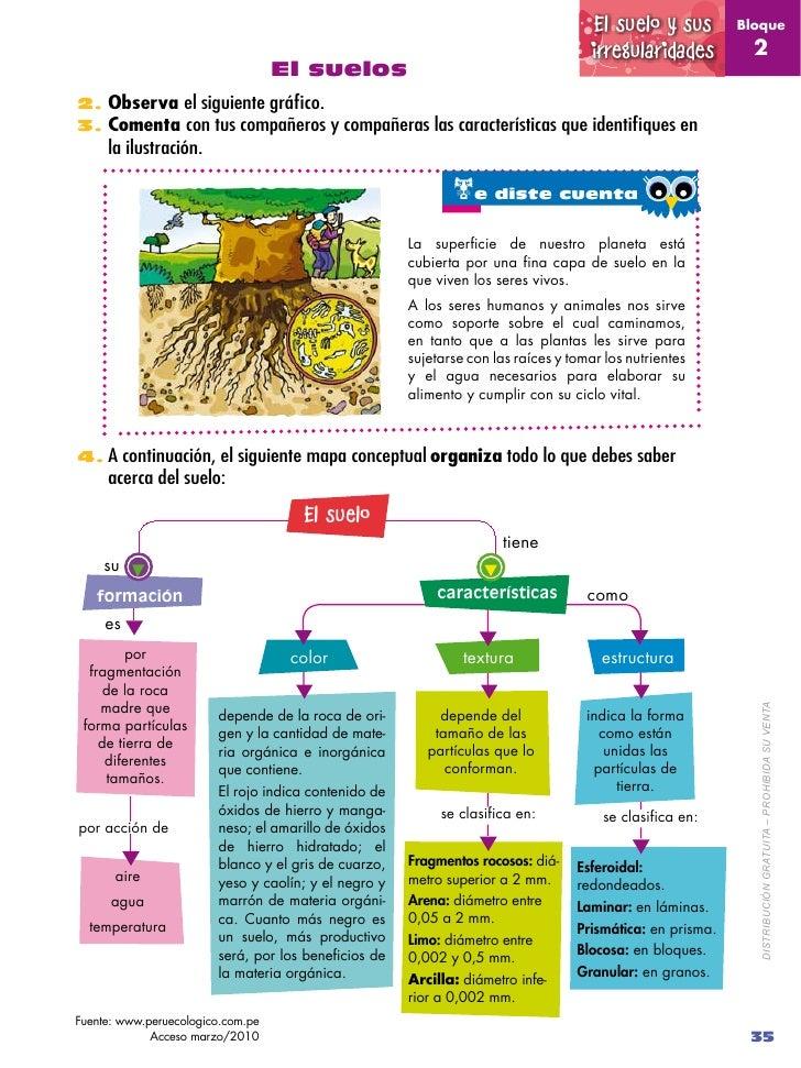 Naturales 5 2 for Informacion sobre el suelo
