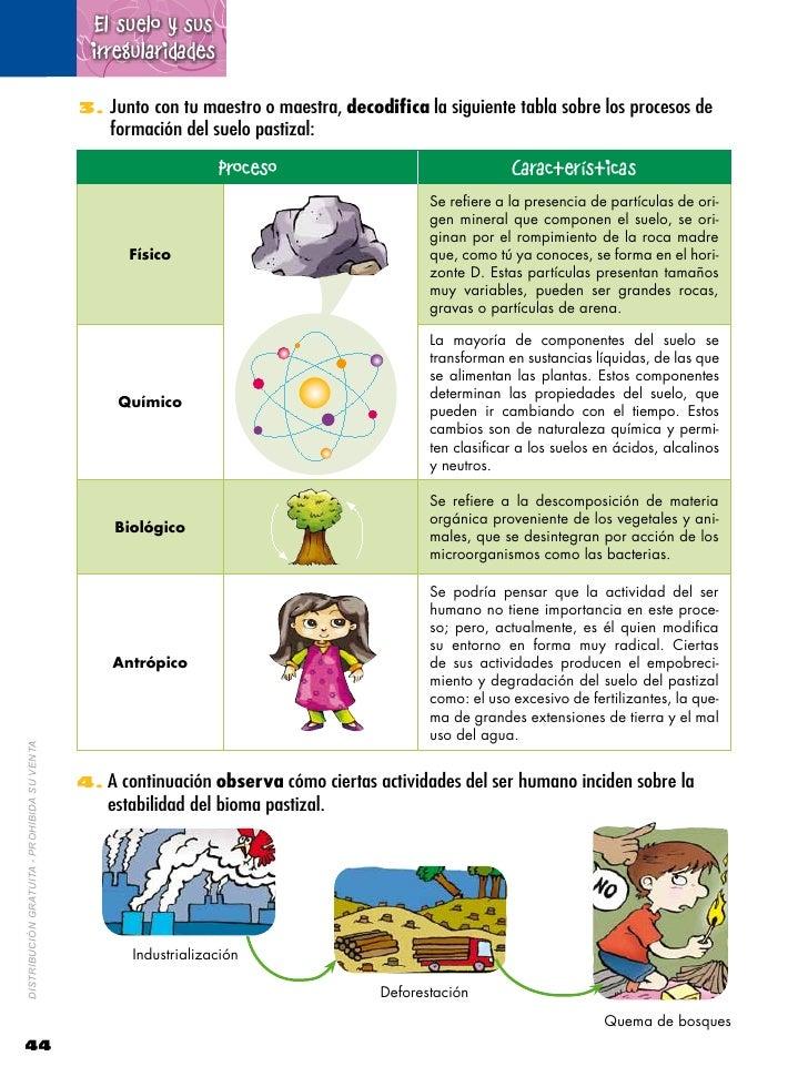 Naturales 6 2 for Formacion de los suelos