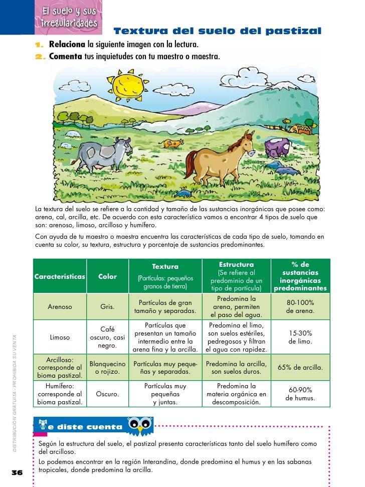 Naturales 6 2 for 5 cuidados del suelo