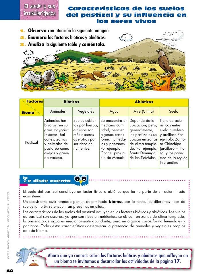 Naturales 6 2 for Cuales son las caracteristicas del suelo