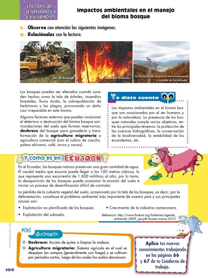 Los ciclos de                                                  la naturaleza                       Impactos ambientales en...