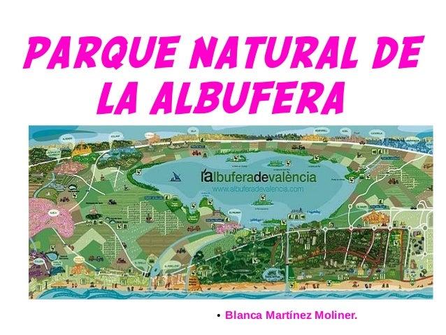 PARQUE NATURAL DE LA ALBUFERA ● Blanca Martínez Moliner.