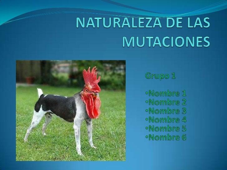NATURALEZA DE LAS MUTACIONES<br />Grupo 1<br /><ul><li>Nombre 1