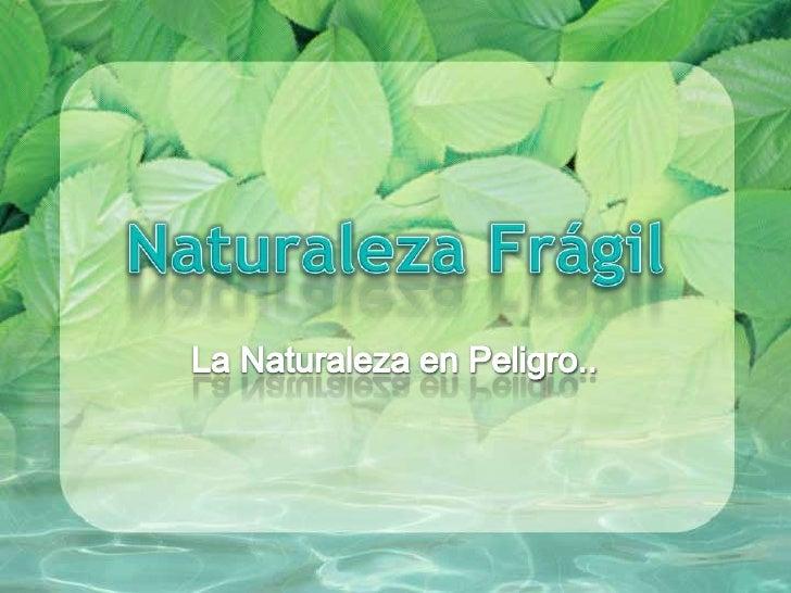 Naturaleza Frágil<br />La Naturaleza en Peligro..<br />