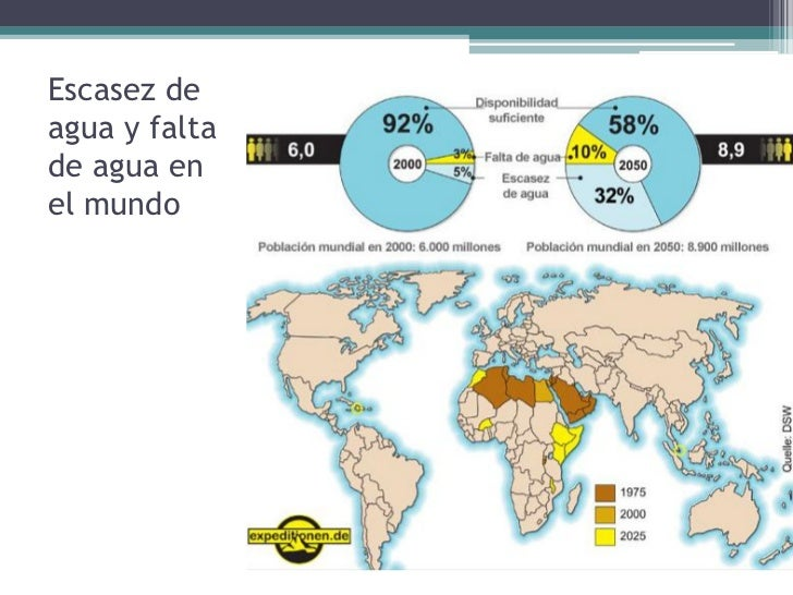 4. LOS IMPACTOS AMBIENTALES: ELAIRE Y LA VEGETACIÓN