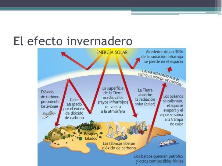 4.2. La deforestación• La deforestación se debe  a la búsqueda de  beneficios económicos  inmediatos, al consumo  excesivo...