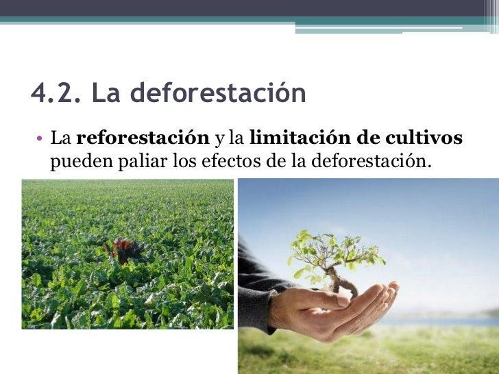 5.1. Las bases del desarrollosostenible• Ejemplos de  desarrollo sostenible  serían: el uso racional  de los recursos  nat...