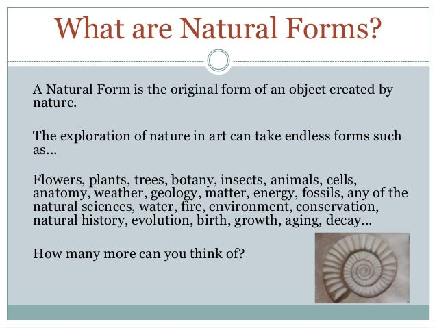 What are Natural Forms?A Natural Form is the original form of an object created bynature.The exploration of nature in art ...