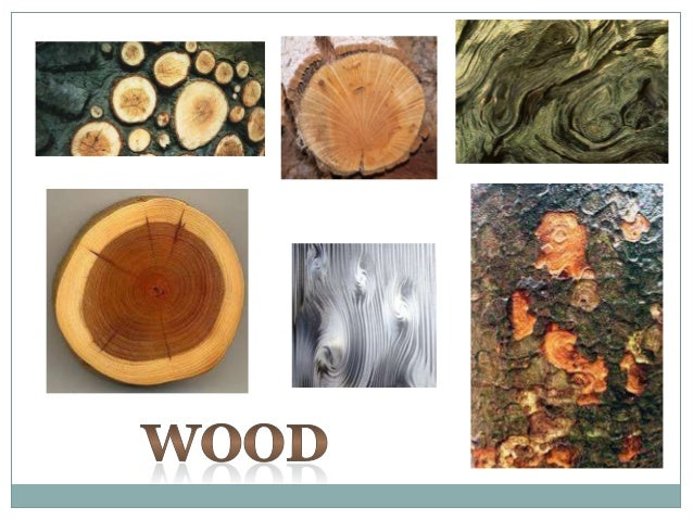 A few more ideasinspired by Natural      Forms...