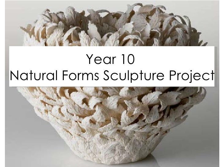 Natural Forms Sculpture Project