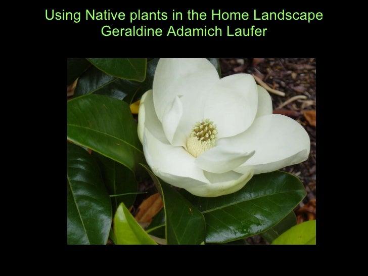 Using Native plants in the Home Landscape Geraldine Adamich Laufer