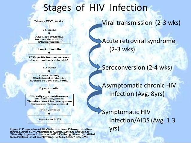 the mode of transmission and stages of aids Aids transmission download pdf copy by  those who are injection drug abusers or are likely to have hiv infection  of organoids which are capable of simulating the early stages of human.