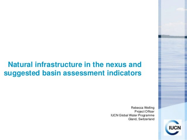 Natural infrastructure in the nexus andsuggested basin assessment indicators                                            Re...