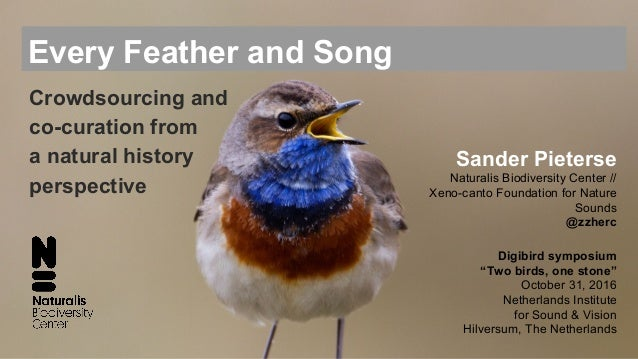 Every Feather and Song Sander Pieterse Naturalis Biodiversity Center // Xeno-canto Foundation for Nature Sounds @zzherc Di...