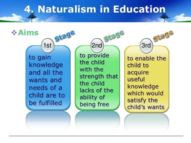 Naturalism: Meaning, Principles and Contribution | Education