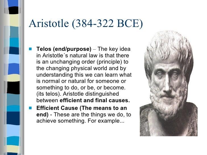 Philosophyzer