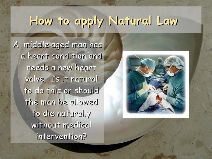 Outline the theory of natural law