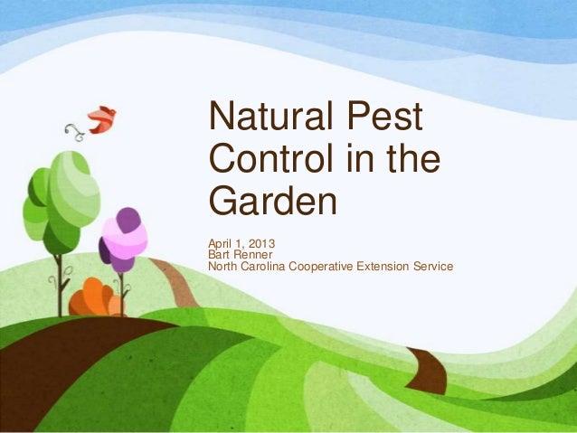Natural PestControl in theGardenApril 1, 2013Bart RennerNorth Carolina Cooperative Extension Service