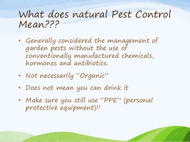 Natural pest control in the garden