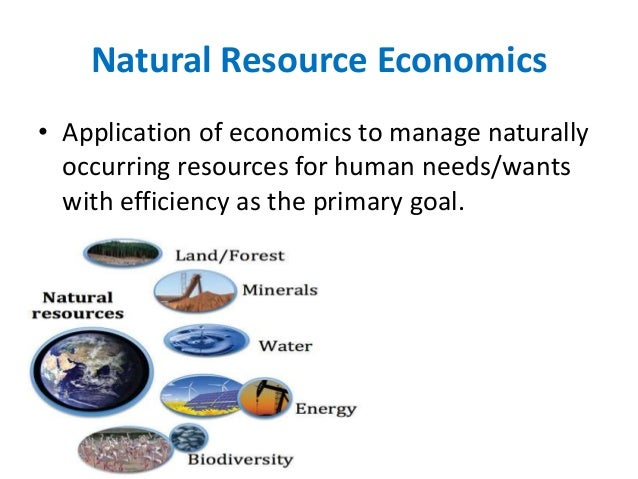 economic importance of natural resources Basic concepts, economic regulation, government policy, the economics of  special  the earth's natural resources are finite, which means that if we use  them  table 1 presents some estimates of known world reserves of five  important.