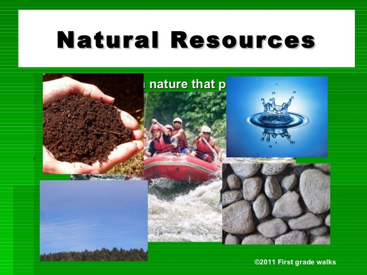 Some Examples Of Natural Resources