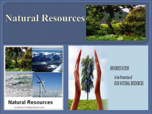   Natural resources occur naturally within environments that exist  relatively undisturbed by humanity, in a natural form...