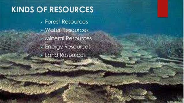 kinds of natural resources