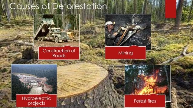 Natural resources, Conservation, & its Depletion.