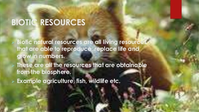 Depletion Of Natural Resources Ppt