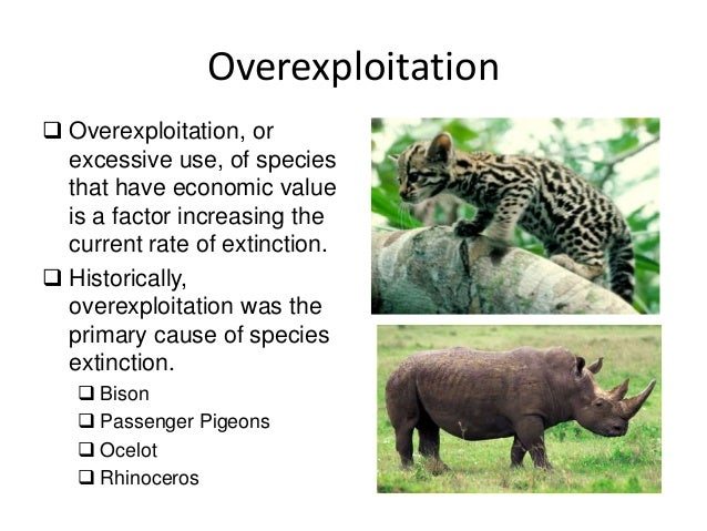 overexploitation of natural resources 5:03 global count: arable land | global 3000 - duration: 1:32 dw english 1,229 views 1:32 conservation of natural resource elearning science - duration: 3:45 goyal brothers prakashan 50,774 views 3:45 a brief introduction to minerals - duration: 10:22 mike sammartano 631,582 views 10: 22.